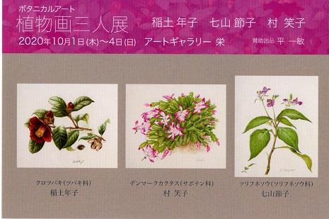 20200823-植物絵.jpg
